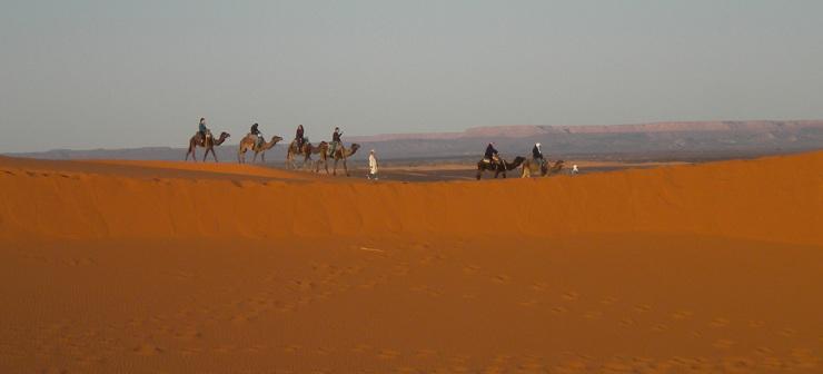 Deserto del Marocco: i tour in dromedario