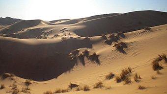 Vivi il Deserto del Marocco