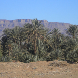 Tour Marocco da Fes