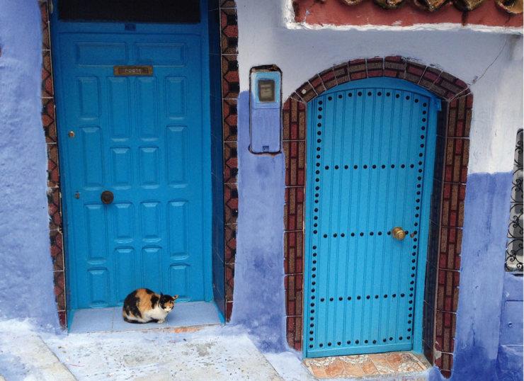 Chefchaouen: la città blu