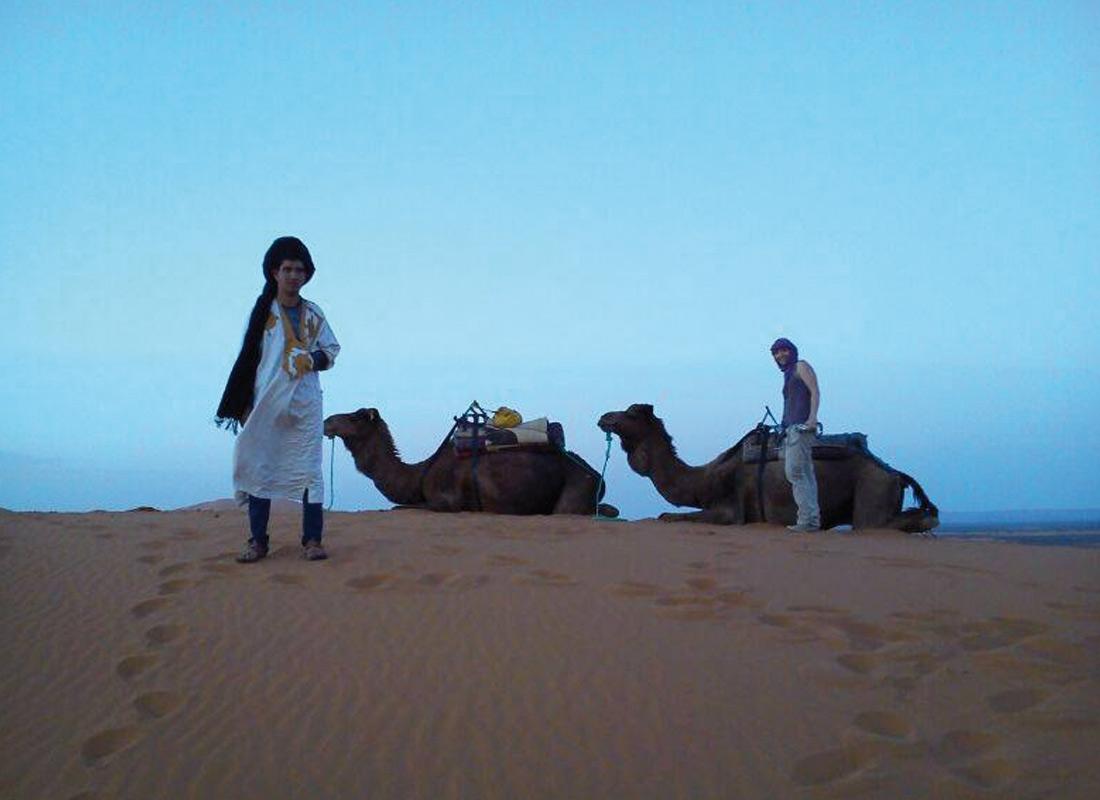 Cammelli nel deserto - Tour Marocco