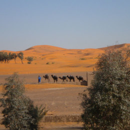 Marocco Tour