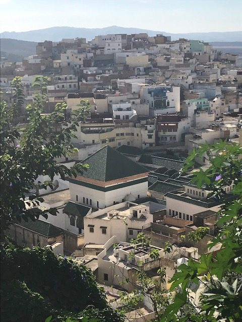 Moulay Idriss Zerhoun, vista