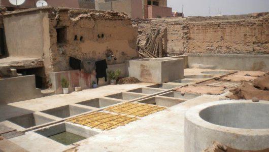 la concia delle pelli a marrakech